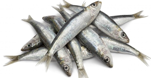 7 loại hải sản giúp giảm cân nhanh hiệu quả không nên bỏ qua